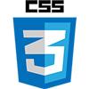 CSS3100